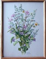Цветы из березовой рощи