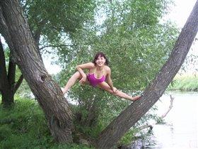 на речке на дереве!