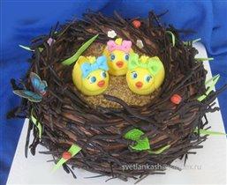 Торт Гнездо с птенцами