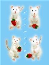 Мышка.