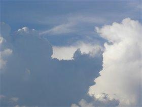 Облака - быстроногие лошадки...