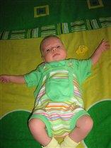 Дама в зеленом на зеленом диване