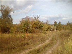 Дороги в лесу !!