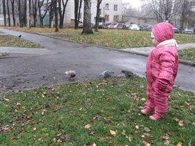 Лиза и голуби