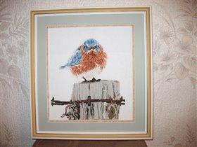 Mad blue bird (Bucilla)