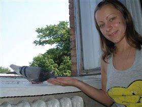 Наш домашний голубчик