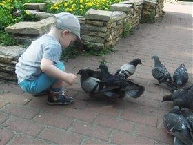 Саша кормит голубков!