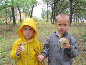 поход в лес это и спорт и развлечение