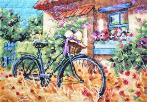 Bicycle Afternoon