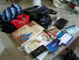 содержимое дамской сумки :-)