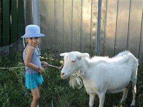 Позируем с козой