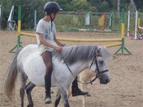 А пони тоже кони