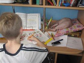 Мальчики делают уроки.