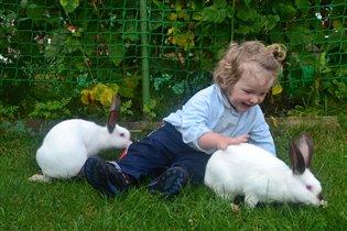 Кролички мои