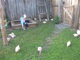 Малыш и цыплята
