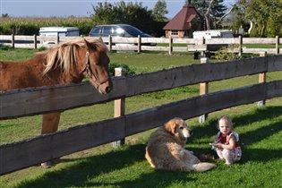 Малышка и ее друзья