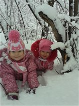 Зимняя прогулка в лесу