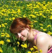 на цветочном поле