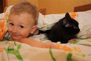 кошки и крошки