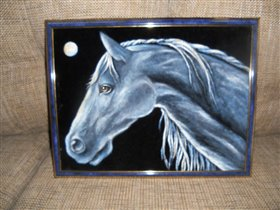 Лошадь на бархате