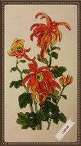 Хризантема от Беатриче