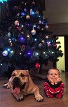 Олежка и Лев в ожидании подарков по елочкой