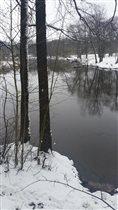 Первый снег.Лес