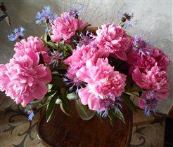 Любимые цветы из сада.