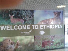 В аэропорту Аддис-Абебы