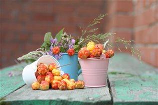 Северная ягода морошка