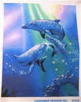 Дельфины (Rainbow Dolphins от Candamar Designs)