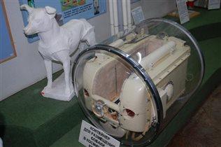 Контенер для собаки в космическом корабле