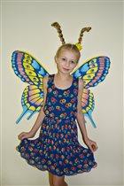 Настроение бабочки