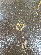Любовь везде...