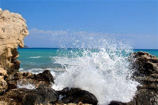 Морские обнимашки )
