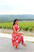 На плантациях винограда