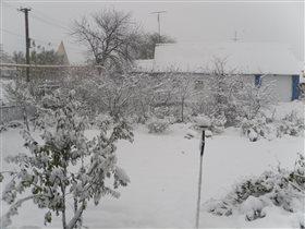 Зима в селе