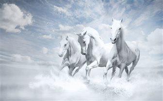 3 коня