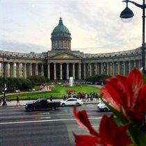 Казанский кафедральный собор, Санкт-Петербург