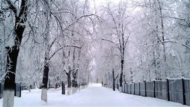 Однажды зимним утром