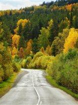 По дороге в осень