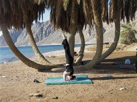 Семинар по йоге, Дахаб, Египет