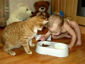 Непременно знать должна, что на завтрак у кота!