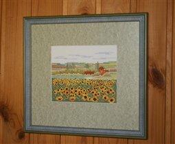 Sunflower Field Lanarte