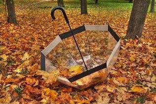 Осень и зонт - всегда вместе