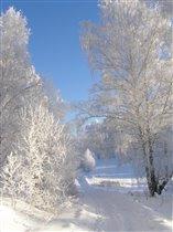 Зимы волшебное утро