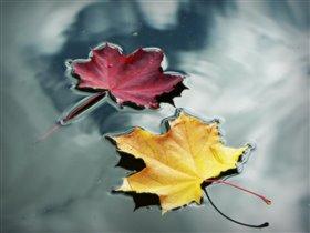 Осенние кораблики