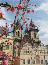Pražské jaro (Весенняя Прага)