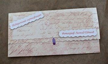 Подарочный сертификат leonidevteev.ru