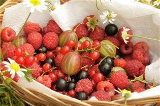 ягодная корзина